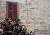 Fotografia finestra e il muro di pietra