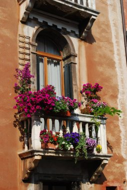 Window with balcony and flowers