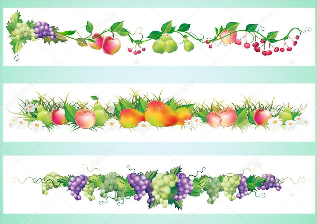 Fruits diet border