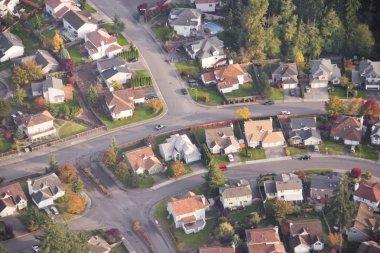 Quiet Suburban Street