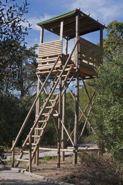 Watch Wooden Tower