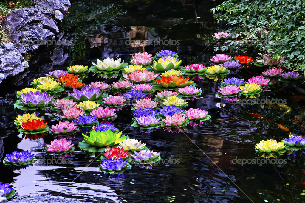 Acqua artificiale dello stagno di carpa lillies giada si for Stagno artificiale
