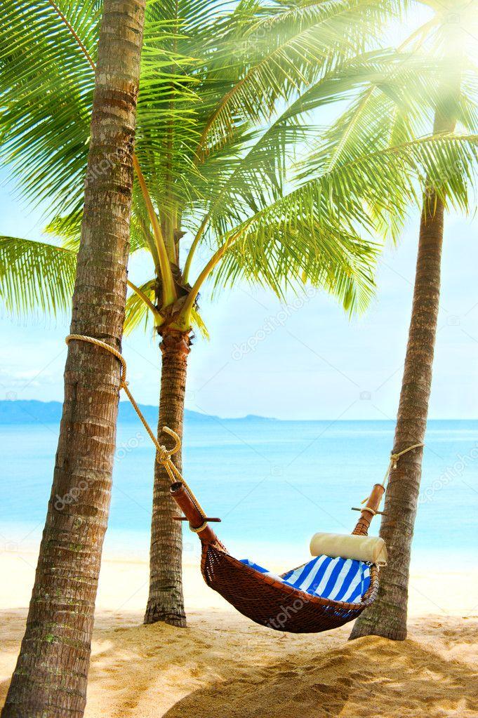 Empty hammock between palm trees