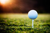 Fotografie Golf