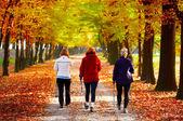 Fotografie tři ženy v parku - nordic walking