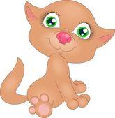 červené kotě