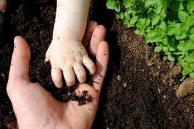 """Картина, постер, плакат, фотообои """"отец и дочь руки играют с почвой в саду """", артикул 6915655"""