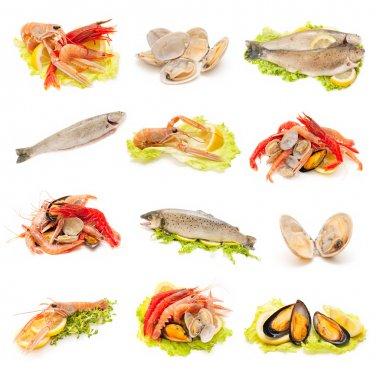 Shellfish and fish