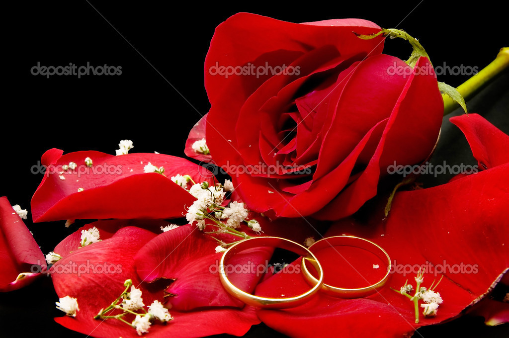 Sfondo Di Rose Nere Foto Stock Luiscar 6956035