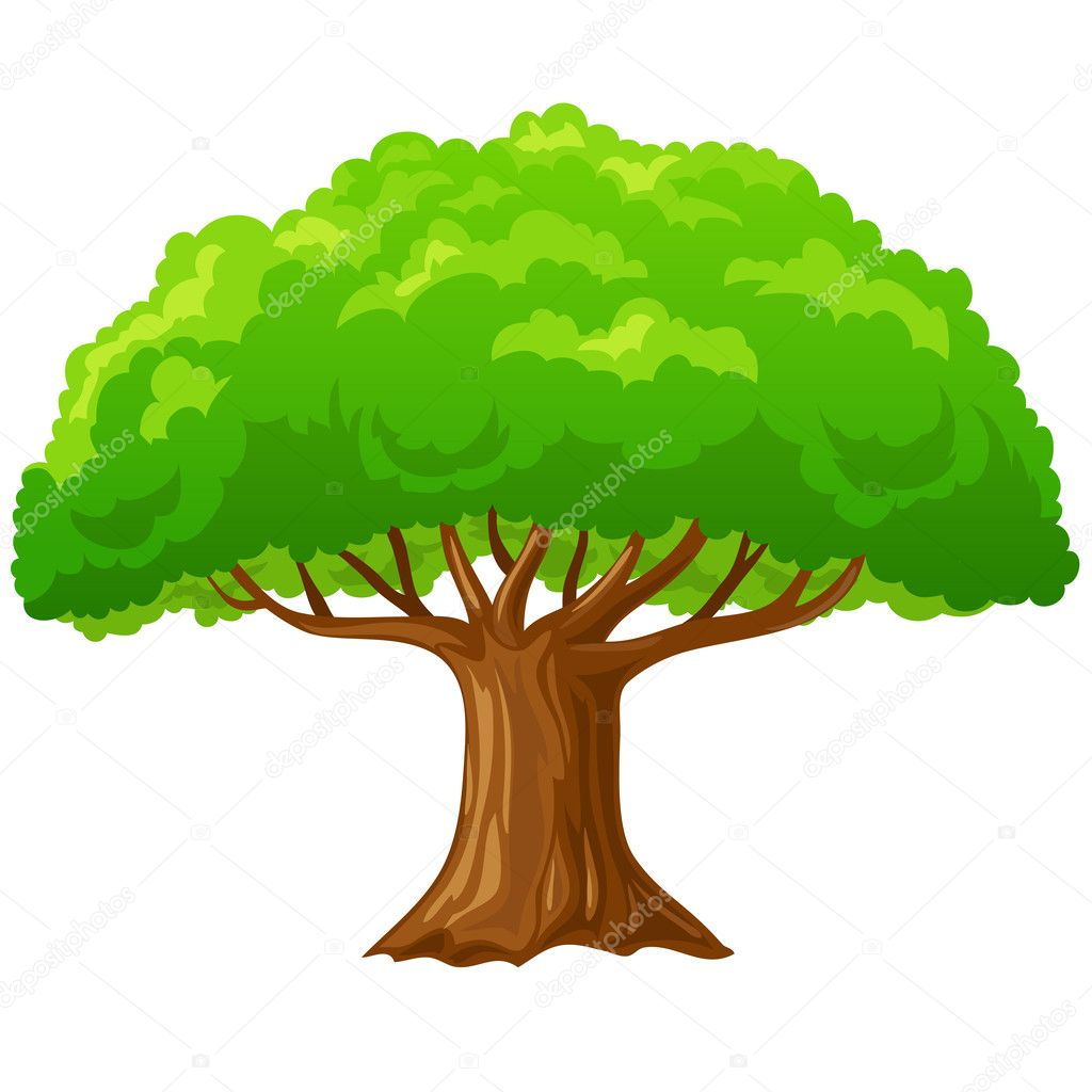 Cartoon big green tree isolated on white.