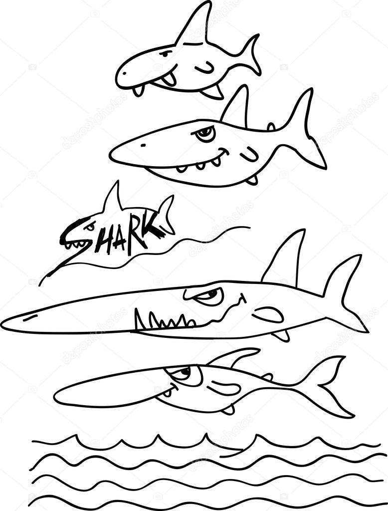 Köpekbalığı Boyama Stok Vektör Natsuk77 7036898