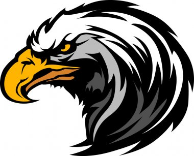 Graphic Head of an Eagle Mascot Vector Illustration