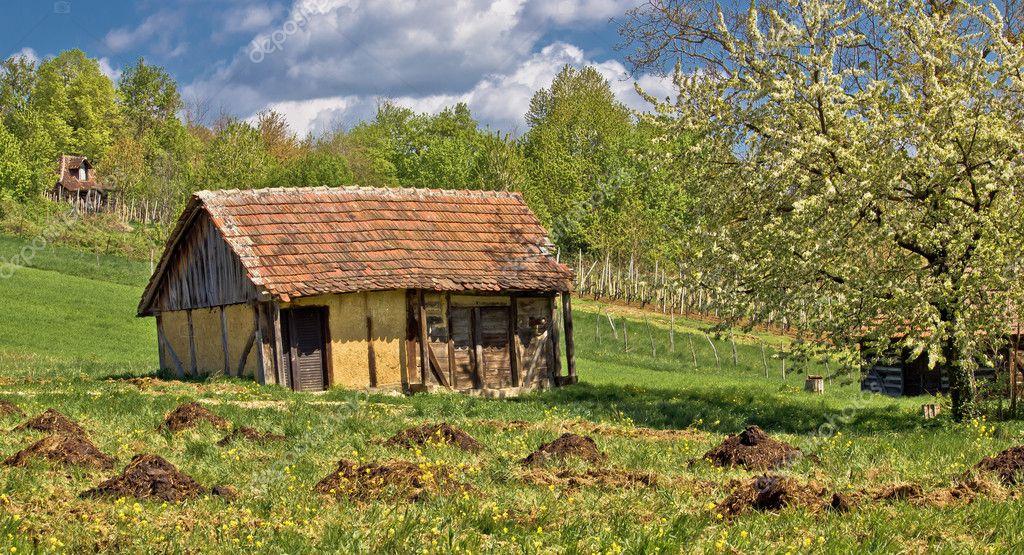 Vista de primavera en la antigua casa de campo tradicional - Casas antiguas de campo ...