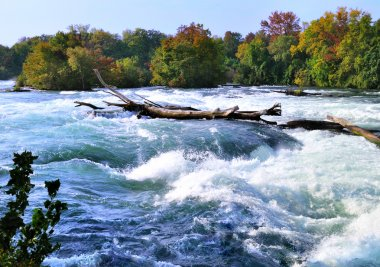 Mountain river rapids in autumn