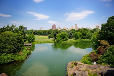 A pond in New York City Central Park in summer