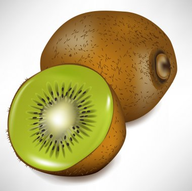 kiwi fruit and lateral view of slice