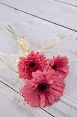 Spa spring flowers