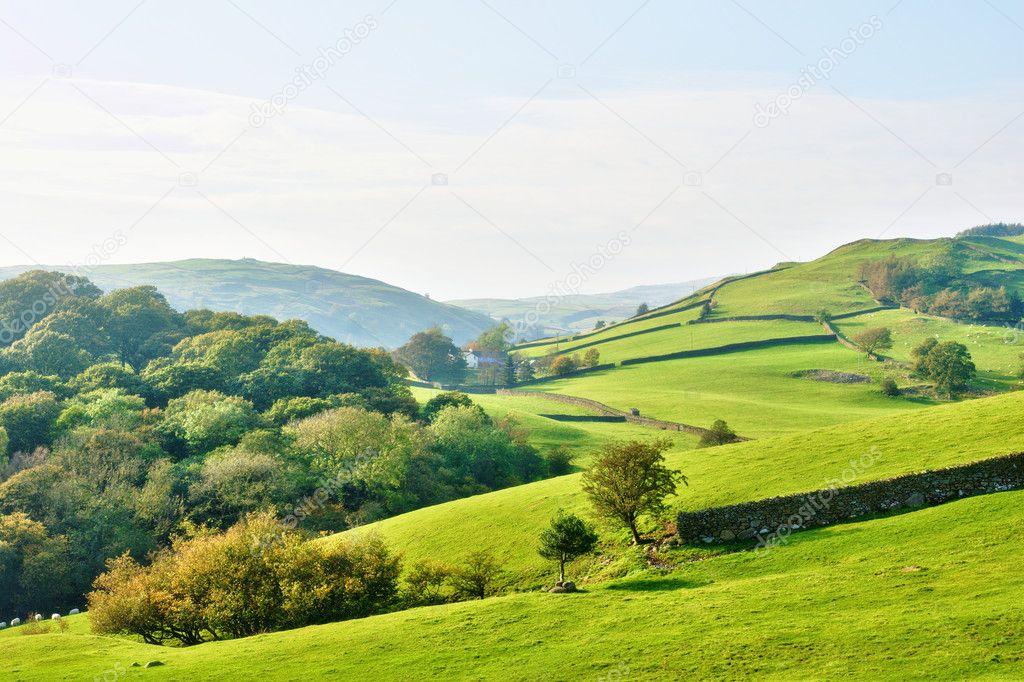 Фотообои Rolling countryside around a farm