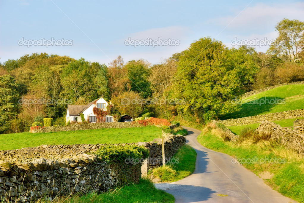 Country lane leading to a house