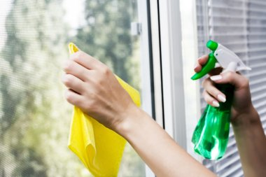 Hands spray clean the window