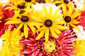 Multicolor Flower background