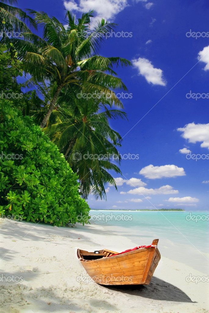 Tropical beach and ship