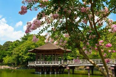 Beautiful wooden gazebo over the lake in Nara city, Japan. stock vector