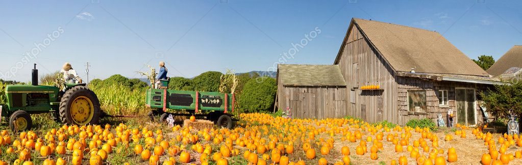 pumpkin patch farm house with halloween decoration stock photo 7276254 - Farm Halloween