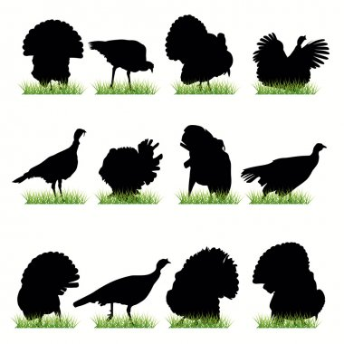 12 Turkey silhouettes set