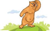 Brown bear is watching.