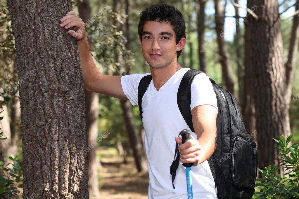 Фотообои Young man hiking in a pine forest