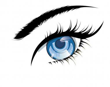 Blue eyes, a beautiful girl stock vector