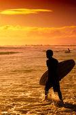 surfař