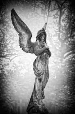 Angel_01_Black_And_White