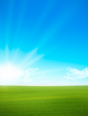 Landscape - green field and blue sky