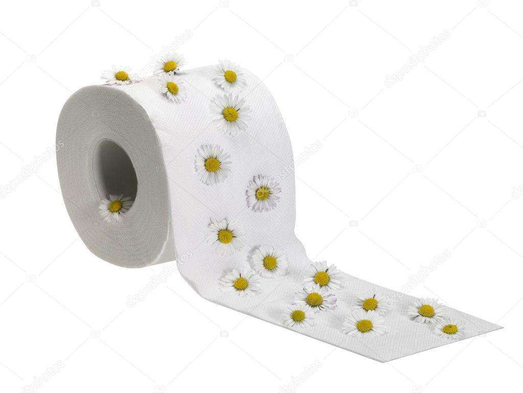 Wc papier roll versierd met bloemen daisy u stockfoto prill