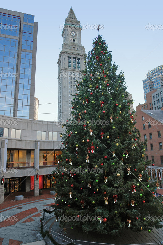 Weihnachten Landschaft in boston — Stockfoto © prill #7722634