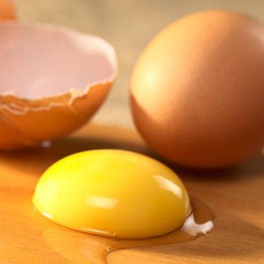 Raw Egg Yolk