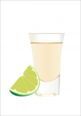 Tequila with lime and salt on wite background. Vector