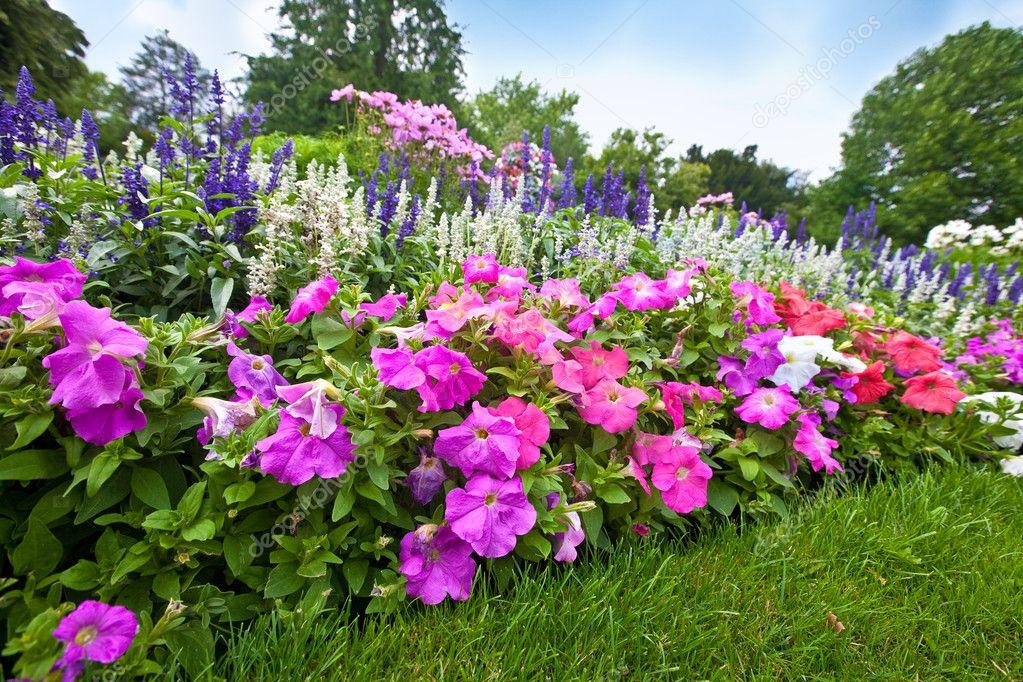 Manicured flower garden with colorful azaleas.