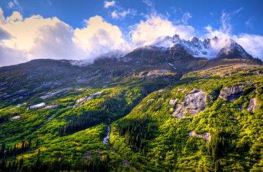 Mountain & Alaska
