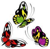 tropických motýlů jsou izolované na bílém pozadí