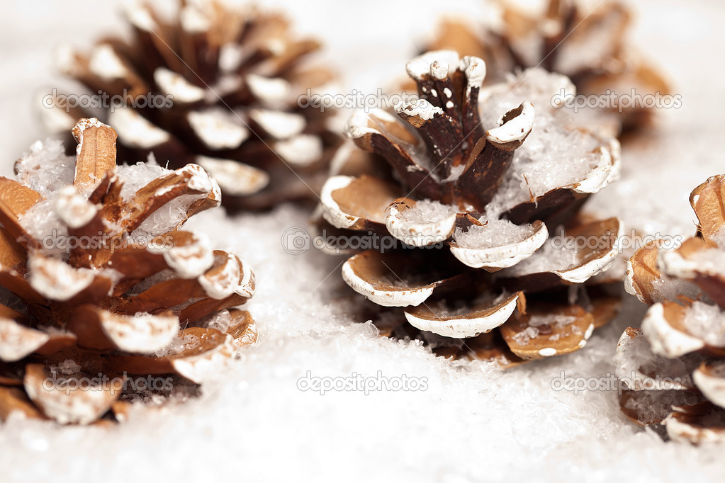 weihnachten schnee eis tanne winter zapfen weihnachtsbaum. Black Bedroom Furniture Sets. Home Design Ideas