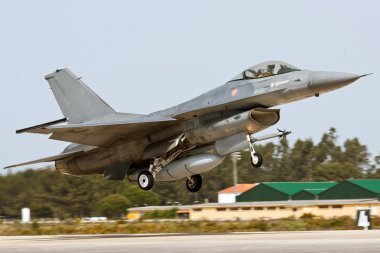 MONTE REAL, PORTUGAL-APRIL 7: F16 Portuguese taking off. Participating in Real Thaw Nato exercise at Base N.5 MONTE REAL,integrated in Fap and Nato on April 7,2 stock vector