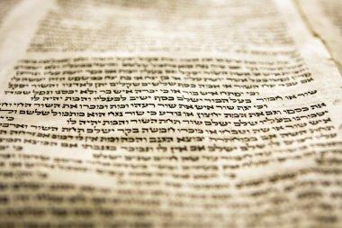 One Line Of Torah