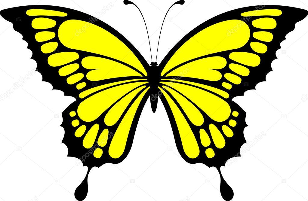 Disegno Di Farfalla Isolato Su Sfondo Bianco Vettoriali Stock