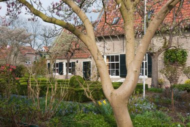 Dutch house with ornamental garden with blooming magnolia