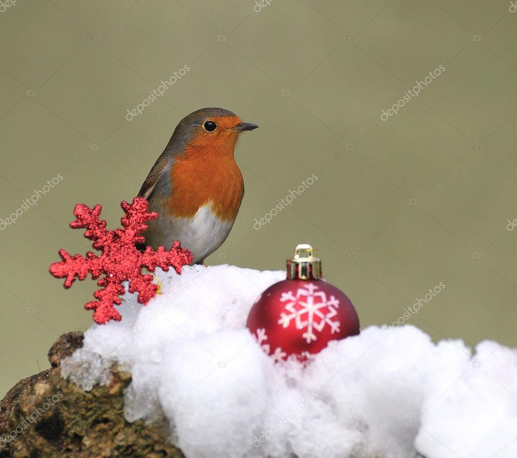 Postcard of Christmas.