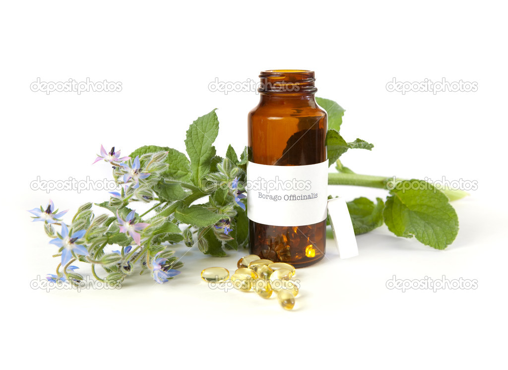Borage oil, Borago Officinalis. The label was made for the photo shoot, no trademark or brand name copyright infringement issues.