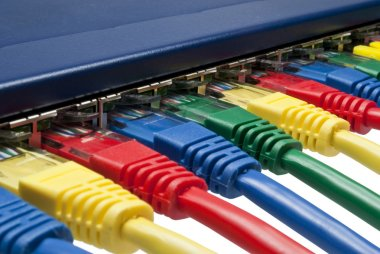 Rainbow color computer network plugs connected to a router or switch
